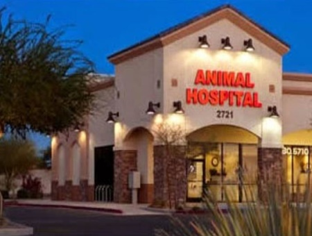 vet in mesa, veterinarians in mesa, arizona