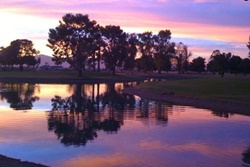 Luxury Lake View Home pet friendly vacation rentals in Mesa, Arizona